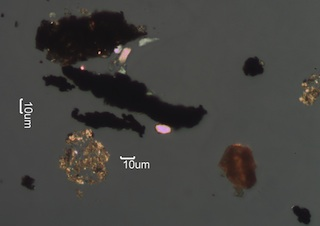 Paint Spheres, Tire Wear, and Other Debris Under the Microscope