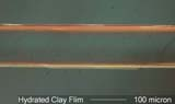 Clay Film from Water