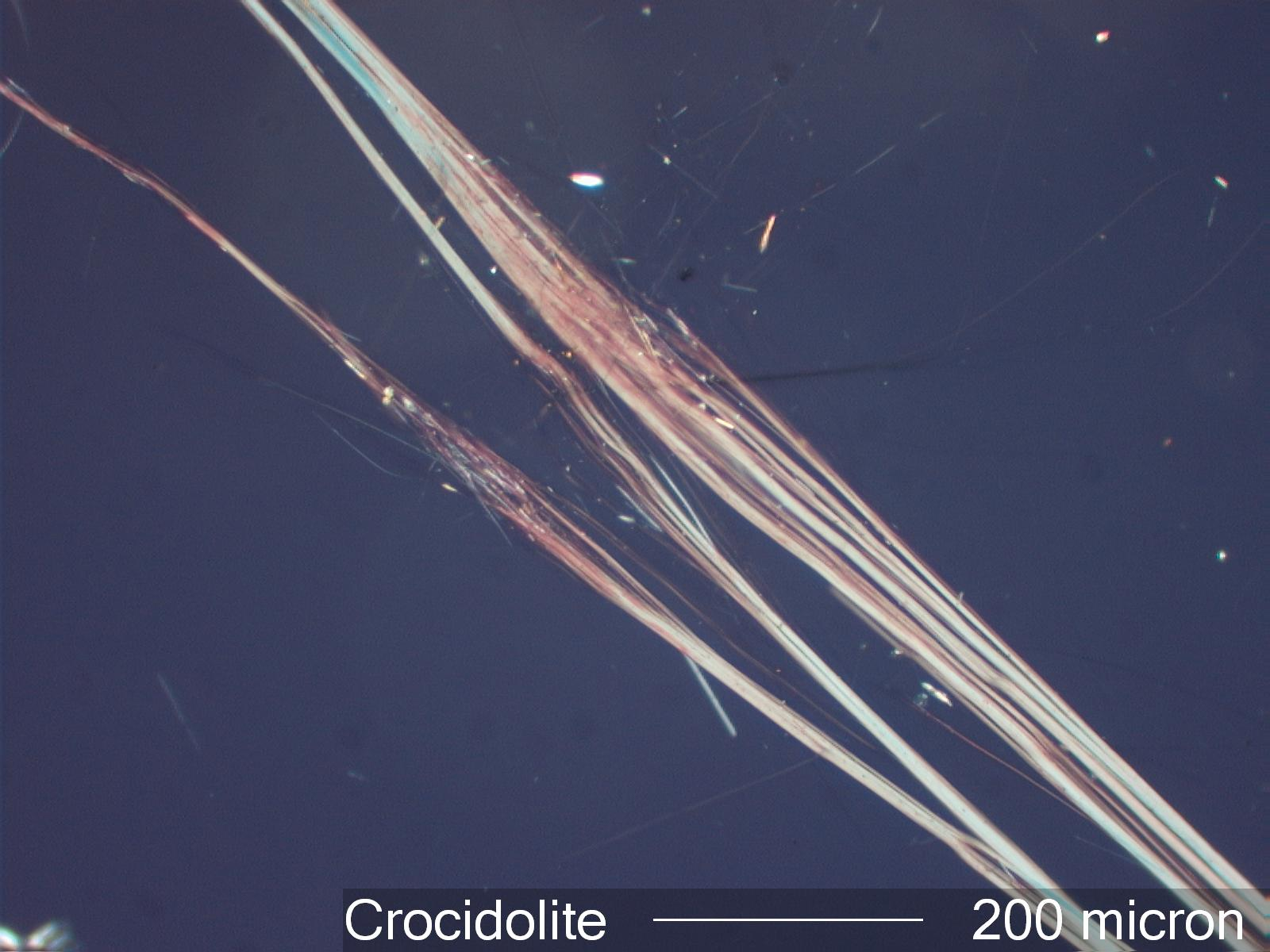 Asbestos Fibers Under Microscope : Amphibole under microscope