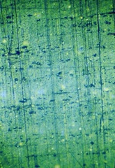 Darkfield Image of 1.9 micrometer Diffration Grating