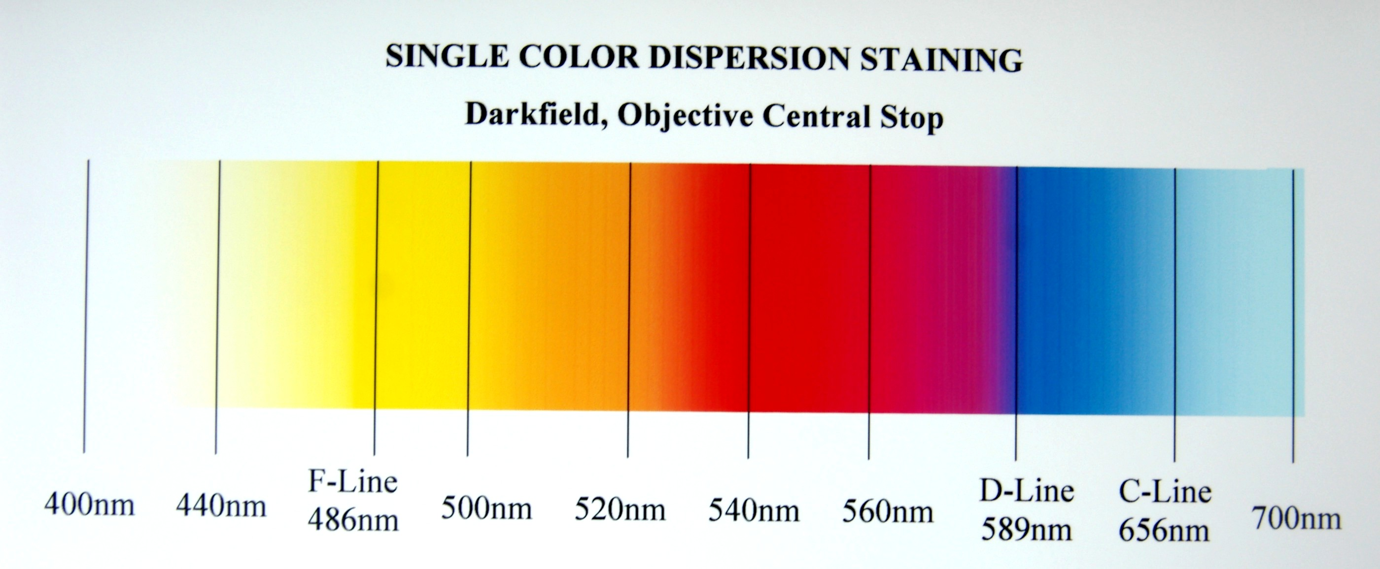 Dispersion staining colors dispersion staining color chart nvjuhfo Images