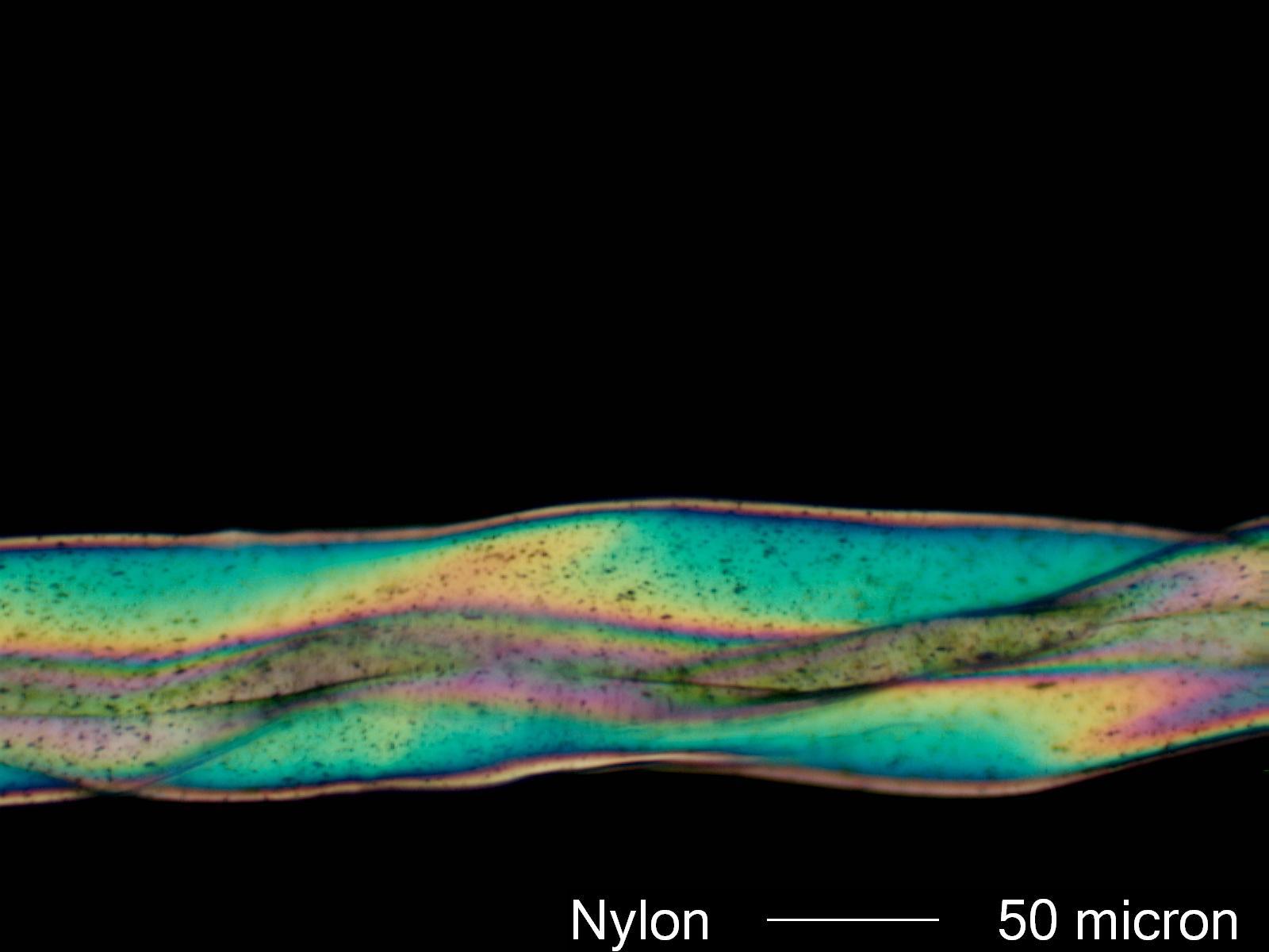Nylon Under Microscope