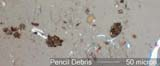 Pencil Debris Under the Microscope