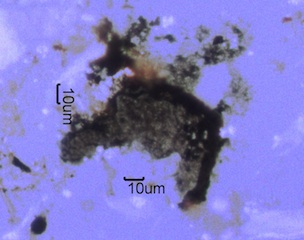 Agglomerated Soot
